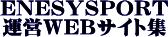 [ソフト工務店]エネシスポート(京都府亀岡市) 運営WEBサイト集~オーソドックスで網羅的な運営サイト群の御案内