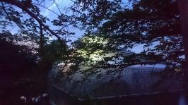 琵琶湖 向こうに見えるは、大津プリンスホテルでは?